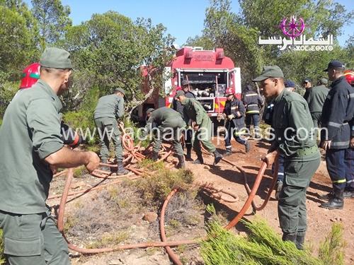 إخماد حريق التهم 72 هكتارا من الغطاء النباتي بعمالة فحص أنجرة