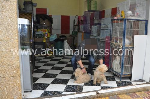 سكان بتطوان يطالبون بإغلاق حديقة للحيوانات فتحت وسط حيهم