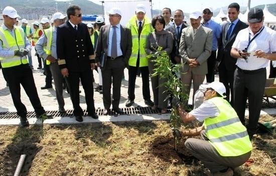 """مصنع """"رونو – نيسان"""" يساهم في الحد من إنجراف التربة بطنجة بغرس 20 ألف شجرة"""