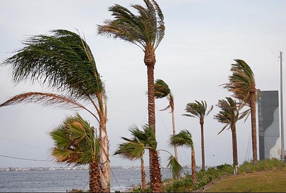 مديرية الأرصاد الجوية تتوقع هبوب رياح شرقية قوية بمنطقة طنجة
