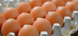 المغاربة استهلكوا 185 بيضة لكل فرد خلال سنة 2018