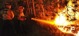 إسبانيا .. حرائق تأتي على أزيد من 1600 هكتار من الغابات والغطاء النباتي
