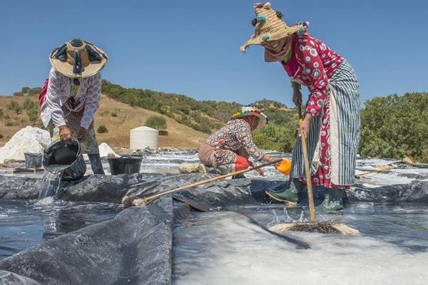 نساء الملح ضواحي وزان يرثن عن أجدادهن مهنة شاقة | الشمال بريس
