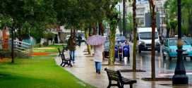مدن الشمال تسجل أعلى نسبة في مقاييس التساقطات المطرية خلال 24 ساعة