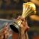 """""""الكاف"""" يكشف موعد الإعلان عن مستضيف كأس أمم إفريقيا 2019"""