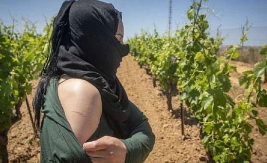 أخصائية نفسانية تميط اللثام عن معاناة العاملات الموسميات المغربيات باسبانيا
