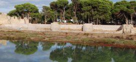 دراسة خزف وبقايا حيوانية تستهدف موقع القصر الصغير الاثري