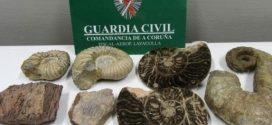 الحرس المدني الإسباني يحجز حفريات تاريخية مهربة من المغرب