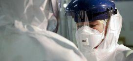 """مصر تعلن اكتشاف أول حالة إصابة بفيروس """"كورونا"""""""
