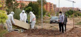 """تسجيل 3 حالات وفاة جديدة و10 حالات شفاء بسبب فيروس """"كورونا"""""""
