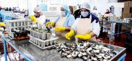 بسبب كورونا.. متابعة مسؤولين عن تسيير وحدة صناعية لتصبير الأسماك