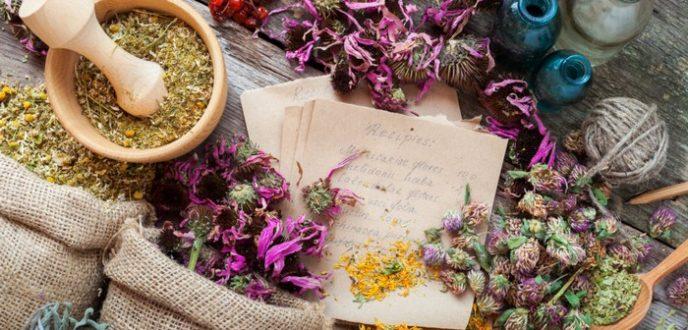 المغرب في المرتبة الثانية عالميا بحوالي 4200 صنف من النباتات الطبية والعطرية