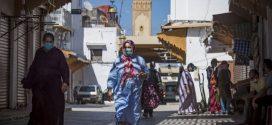 البروفيسور الإبراهيمي: 30% من المغاربة طوروا مناعة طبيعية ضد كورونا