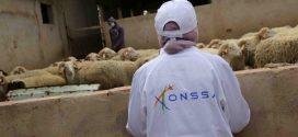 """""""أونسا"""" تكشف عن حصيلة تدخلاتها لتأمين سلامة المغاربة خلال عيد الأضحى"""